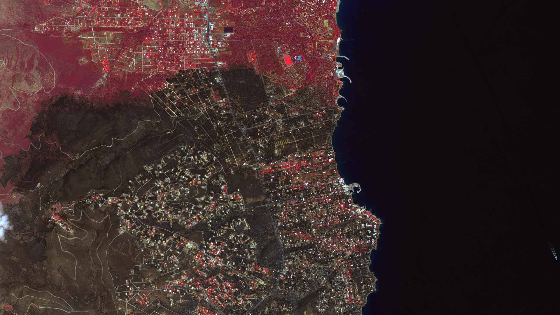 Satellite Images Show Devastation Wrought by Greek Forest ...