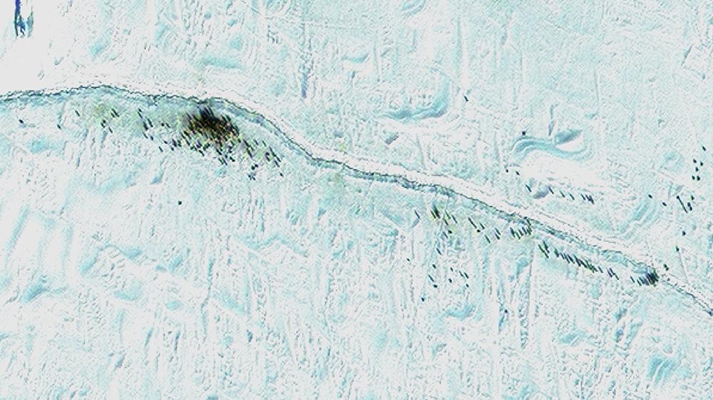 Satellite Image Penguins